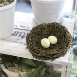 バードネスト 鳥の巣(たまご2個付)15680