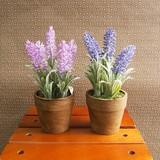 お部屋をグッと華やかに枯れない植物で作る手軽な癒し空間【フラワーポット・ショートラベンダー】