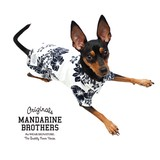 ALOHA SHIRTS アロハシャツ (ホワイト) 犬 服 ドッグウェア