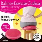 Pelvis Balance Cushion