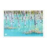 日本の絶景ポストカード JPC-02 青い池