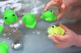 かえる風呂