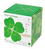 きっとみつかる四つ葉のクローバー栽培セット【インテリアグリーン/ギフト】