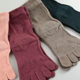 Color Socks