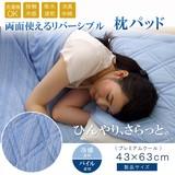 枕パッド 洗える 冷感 涼感 接触冷感 消臭 部屋干し 『プレミアムクール』