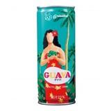 グァバ250g / 夏  ジュース 海 祭り イベント 景品 ノベルティ