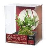アルタ KOBON 南天×苔玉 AR1227001