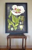 ボタニカルフレーム  花 植物 83×60