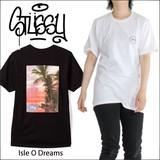 STUSSY 【 ステューシー 】Isle O'Dreams 半袖 Tシャツ (全2色)
