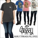 STUSSY 【 ステューシー 】 ST FIRE DRAGON PIG DYED 半袖 Tシャツ (全3色)