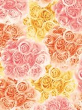 Wrapper Rose Bouquet Half Sheet Whole Sheet