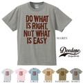 "【DEEDOPE】 ""DO WHAT IS RIGHT"" 半袖 プリント Tシャツ カットソー"