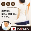 【Made in Japan】chair mat cushion keeping good posture