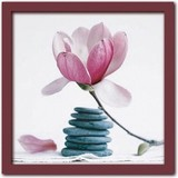 Art Collection/Magnolia with pebbles