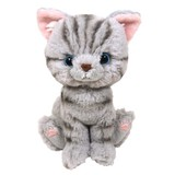 Soft Toy American Short Hair
