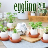 【Collection Catalog】eggling エコフレンドリー 栽培キット ガーデニング ミント