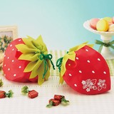 Strawberry Strawberry Pouch Wrapping