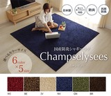 Popular Carpet Flaming Fire Antibacterial Deodorization Plain