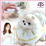 Jewelry Jewelry Box Pomeranian