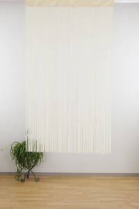 Polyester Clean Ring Curtain