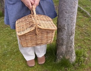 Alarog Basket Natural Miscellaneous goods Antique Miscellaneous goods