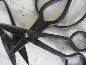 Interior Iron Scissors