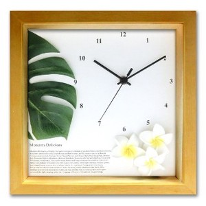 Asia Hawaiian Smallish Interior Clock/Watch Monstera