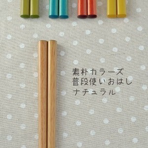 Color Usually Chopsticks Natural Japanese Plates & Utensil