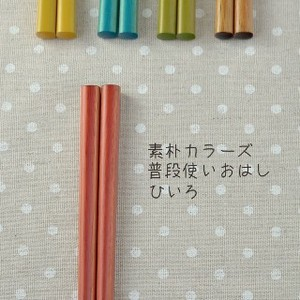 Color Usually Chopsticks Japanese Plates & Utensil
