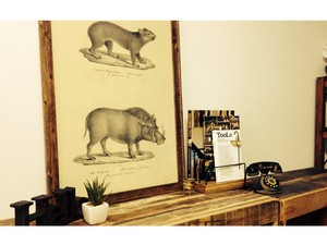 Big Antique Poster Animal 3 Types