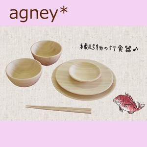 Antibacterial Material Eat Plates & Utensil 6 Pcs Set