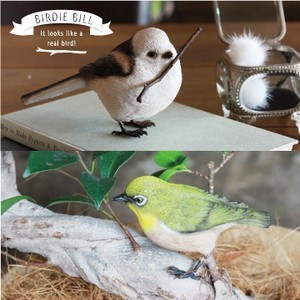 Real Objects BIRDIE BILL Gift Real Animals