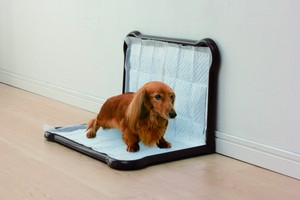 Pet Product Toilet Sanitation Sheet Tray Wide