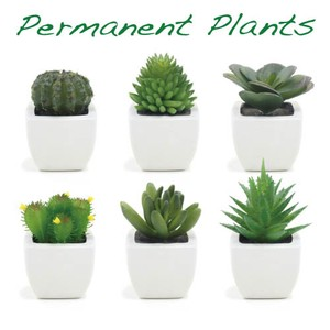 Permanent Plants 24 Pcs