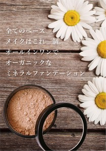 Mineral Foundation Substantially Make
