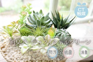 Catalyst Deodorize ARTIFICIAL GREEN Artificial Plants