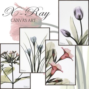 Canvas Art Size S Natural Resin Slim Frame
