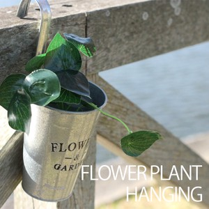 Flower Plant Hanging