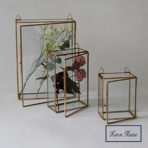 Brass Frame Glass Case Hanging Rectangle