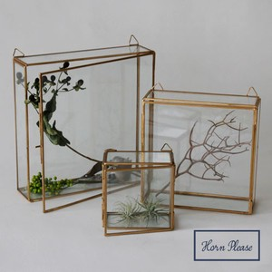 Brass Frame Glass Case Hanging Square