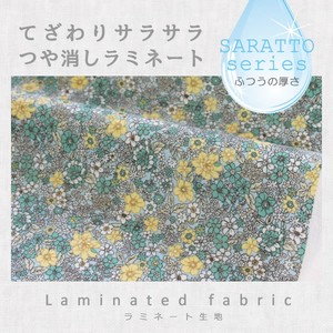 Fabric Matte Lamination Flower Carpet Green Pastel Blue