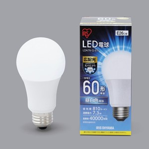 LED Light Bulb Type White Light Bulb Daylight Substantially