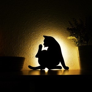 Cat Wall Light Mending