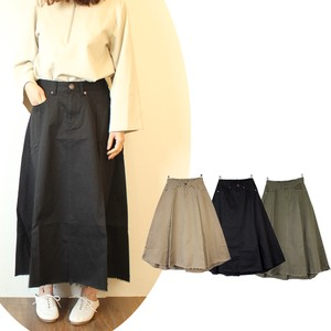 Pleats Skirt Line Color Lean