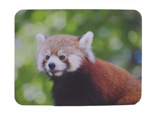 Mouse Pad Panda Bear