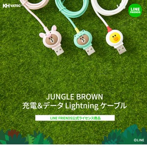 Line Friends Brown Light Cable